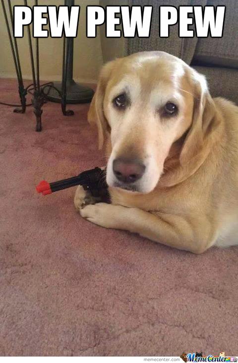 doggie-got-a-gun_o_2010517