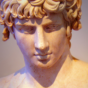 Bust of Antineous