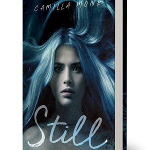 Still, a novel by Camilla Monk