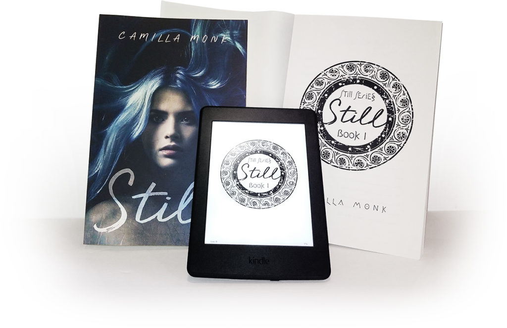 Still, a novel by Camilla Monk